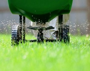 Fertilizing-your-lawn