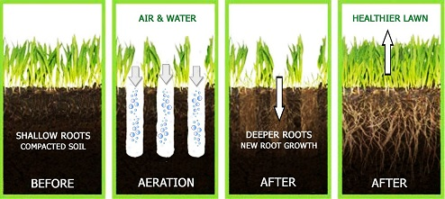 What-is-Aeration