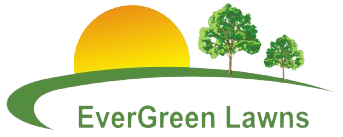 Evergreen Lawns